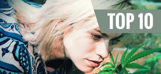 Top 10 Des Variétés De Cannabis À Faible Parfum Pour Minimiser L'Odeur