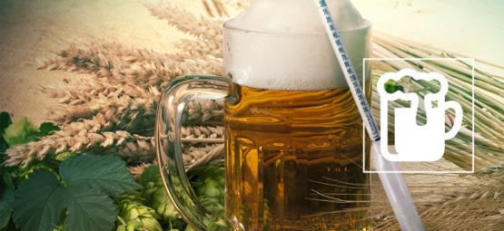 Comprendre L'Hydromètre: Le Secret Du Brassage D'Une Bonne Bière