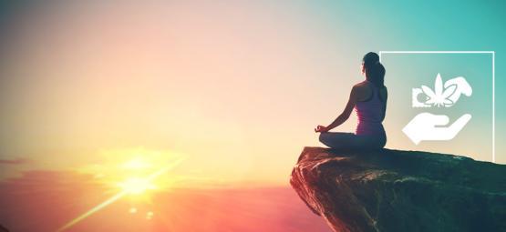Classement Des Psychédéliques : Du Débutant Au Gourou Spirituel