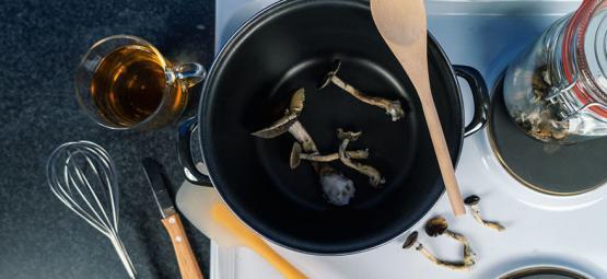 La diète aux champignons de 10 jours : Un voyage vers l'âme