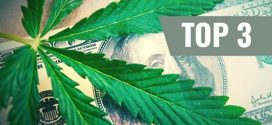 Les Variétés De Cannabis Les Plus Chères (+ Alternatives Abordables)
