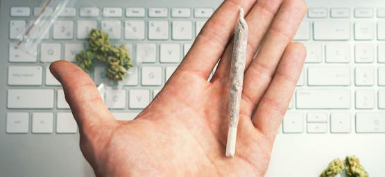 Les carrières du cannabis - Trouver le travail lié au cannabis de vos rêves