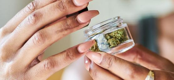 Les Bénéfices (Pour La Santé) Du Cannabis