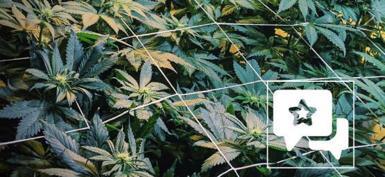 Critique de variété : Casey Jones