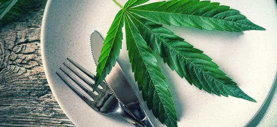Pourquoi Manger Du Cannabis Est Plus Fort Que De Le Fumer