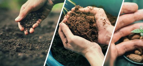 Le dilemme du débutant : terre ou hydro