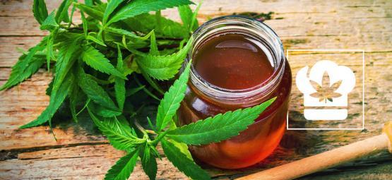Recette : comment faire du miel au cannabis
