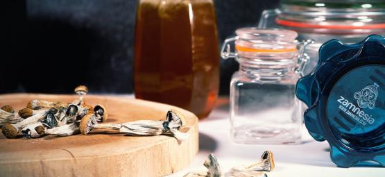 Miel bleu : miel hallucinogène aux champis magiques
