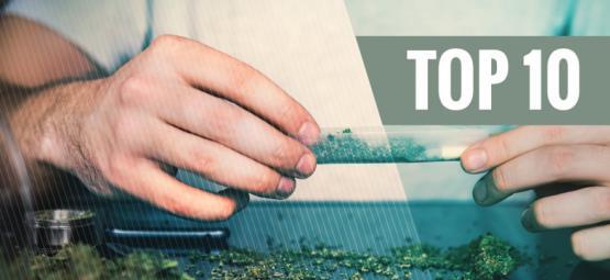10 Meilleurs Raisons D'arrêter Le Tabac Et De Fumer L'herbe Pure