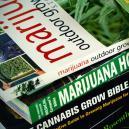 Top 6 Des Meilleurs Livres De Culture De Cannabis
