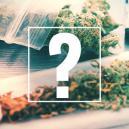 Joints, Blunts Et Spliffs: Quelle Est La Différence ?
