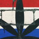 Voici Les 10 Meilleurs Spots Où Fumer au Pays-Bas