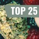 Top Cinq Des Variétés De Cannabis Fruitées À Essayer Maintenant