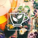 Les Meilleurs Herbes Avec Lesquelles Se Préparer Un Thé