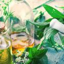 Comment Faire Vos Propres Teintures Végétales Chez Vous
