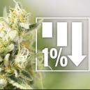 6 Variétés De Cannabis Avec 1 % De THC Ou Moins