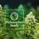 5 Conseils: Culture des graines à autofloraison