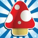 5 faits étonnants à propos des champignons magiques