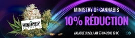 Offre Ministry of Cannabis