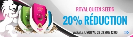 Offre Royal Queen Seeds