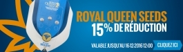 15% Réduction Royal Queen Seeds